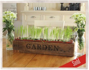 Garden-box-side